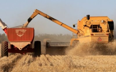 Auger_harvester_header_farm_machinery_insurance_500x500